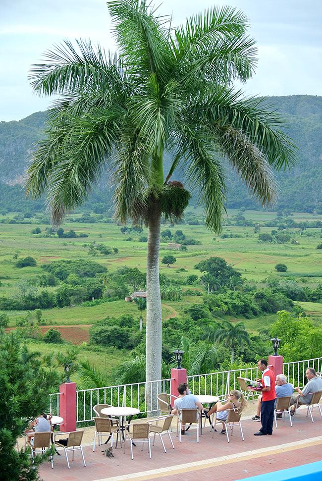 Cuba picture diary // Vinales - via noglitternoglory.com
