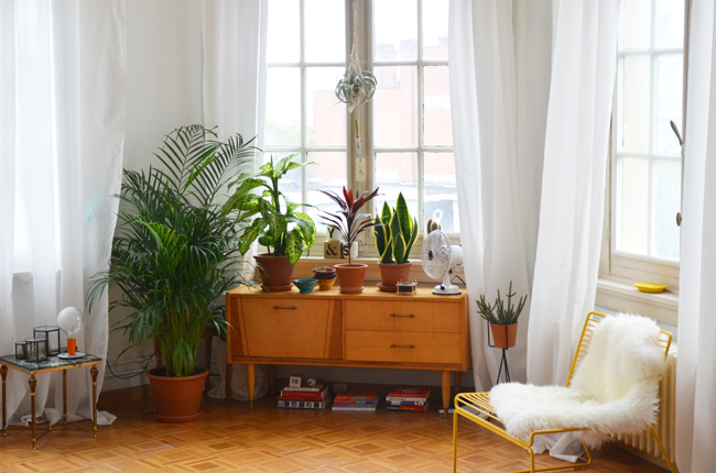 Young Creatives: Sofie Vertongen // Inside her home and studio // Plant filled corner - via noglitternoglory.com