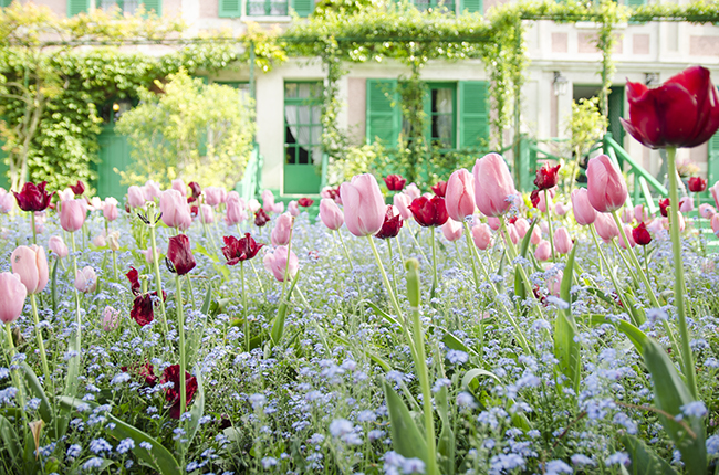 Claude Monet's Garden and House in Giverny (+ 5 tips for your visit!) - noglitternoglory.com