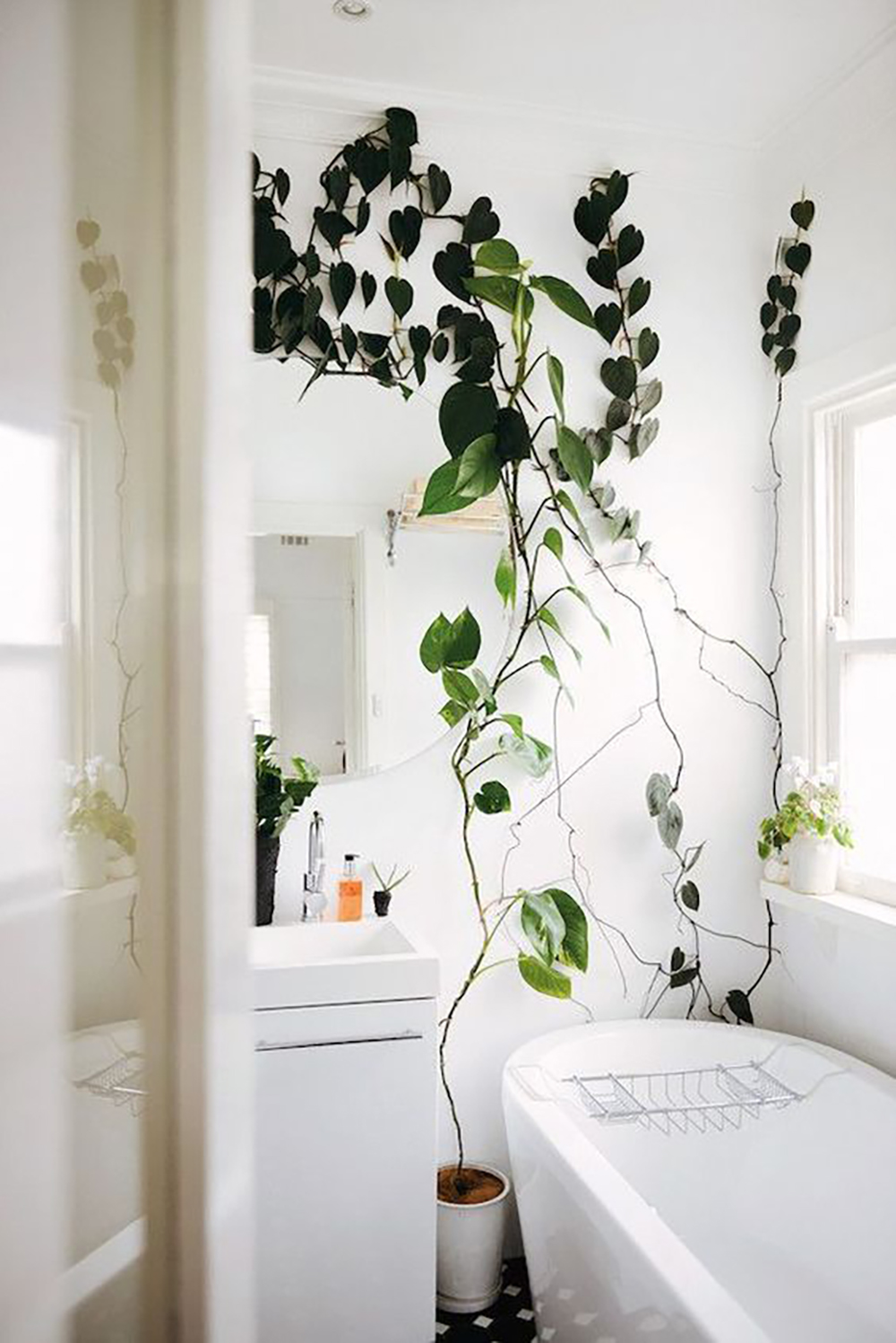 I've been loving the idea of big or many plants in a bathroom. Our own bathroom doesn't really have a lot of space for extras but I've added some ...